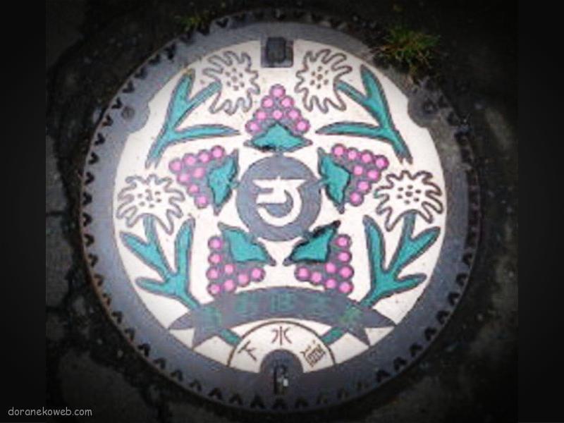 花巻市(岩手県)の「フタw」Part9