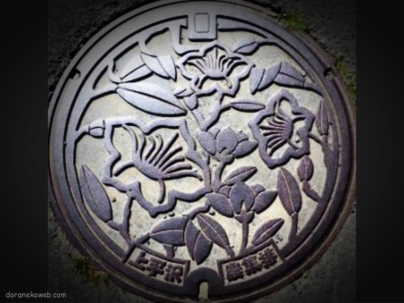 紫波町(岩手県)の「フタw」Part4