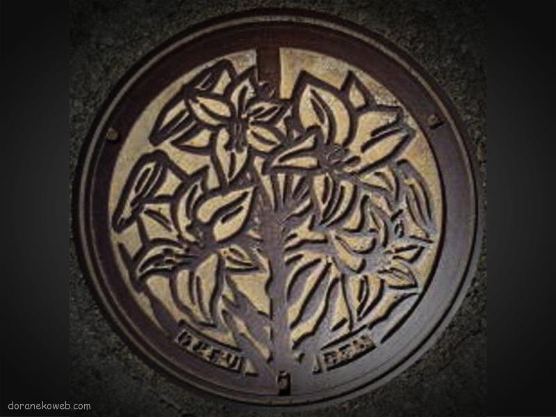 和泊町(鹿児島県)の「フタw」Part2