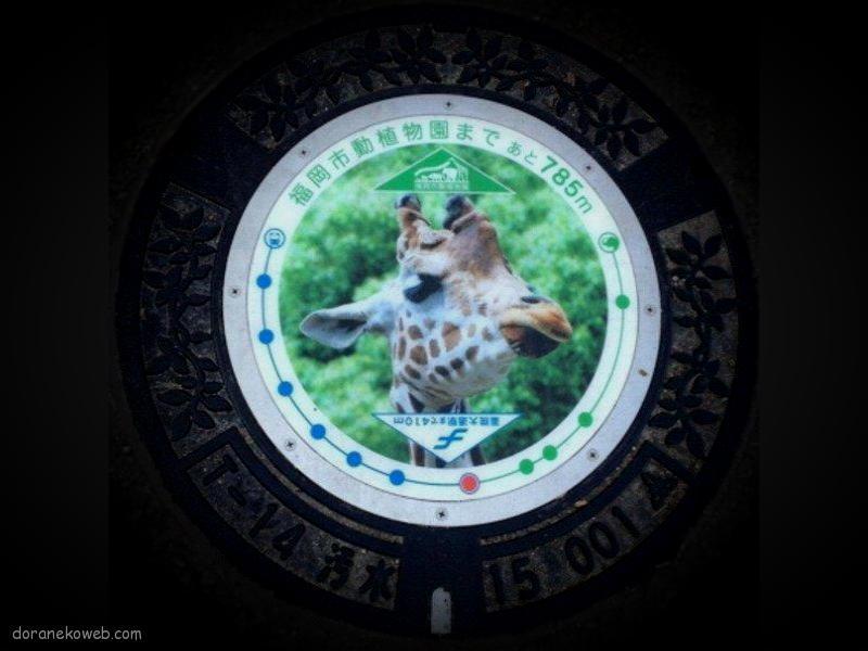 福岡市(福岡県)の「フタw」Part7