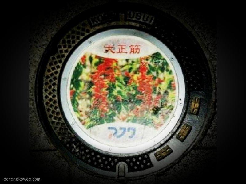 神戸市(兵庫県)の「フタw」Part40
