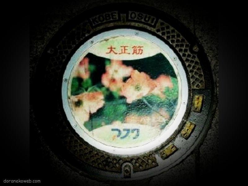 神戸市(兵庫県)の「フタw」Part42