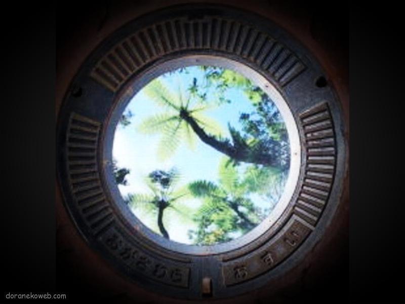 小笠原村(東京都)の「フタw」Part3